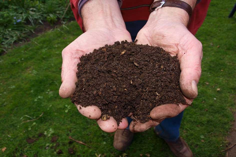 Fertilizantes, abono, hrbicida