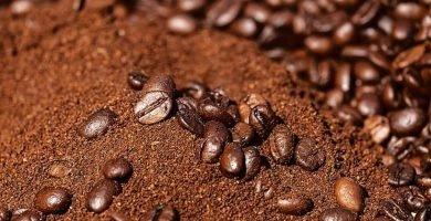 Cafe para plantas